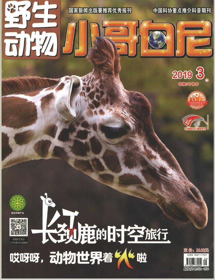 小哥白尼(野生动物)杂志最新一期订阅