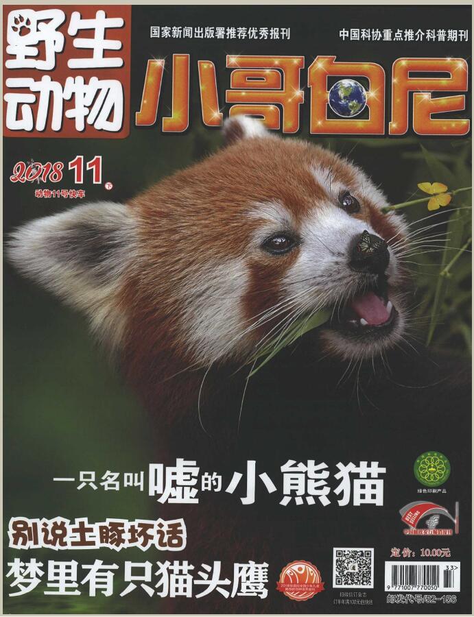 小哥白尼(野生动物)杂志购买